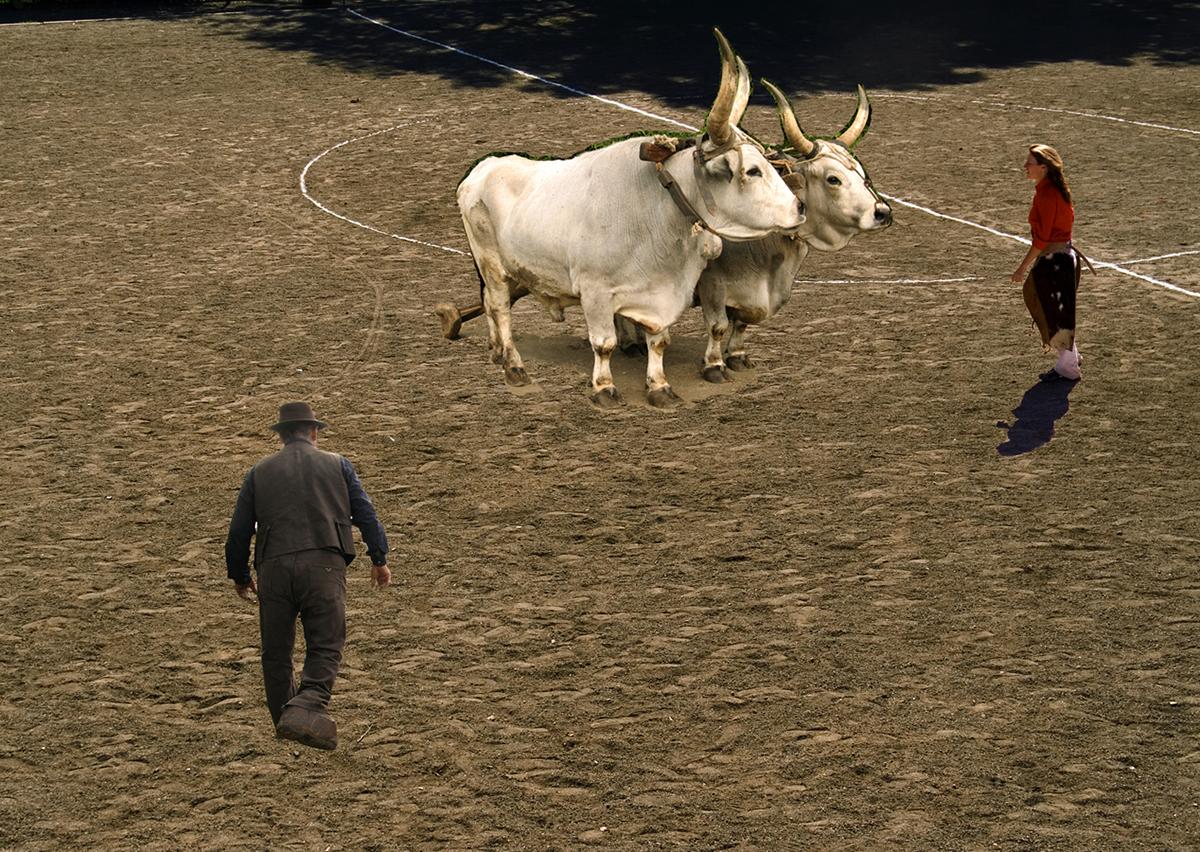 e-benassi_senza-titolo-459-metri-di-campo-arato-2005-collage_03